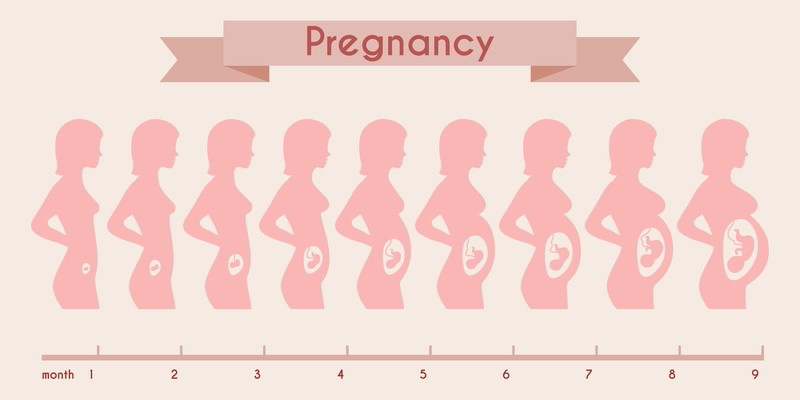 jag är gravid vad gör jag nu