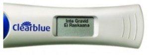 Ej testad gravid